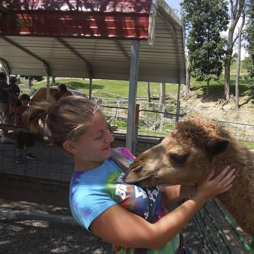 Mrs. Torgler petting a camel.