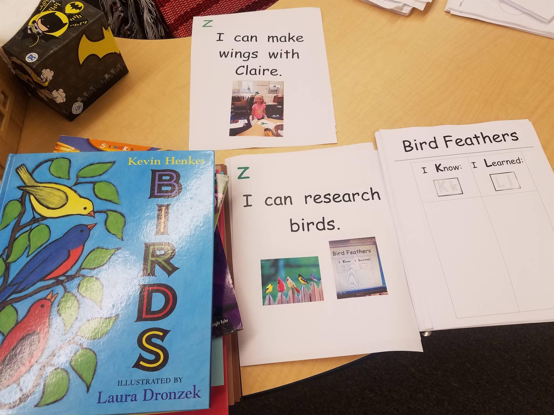 bird research