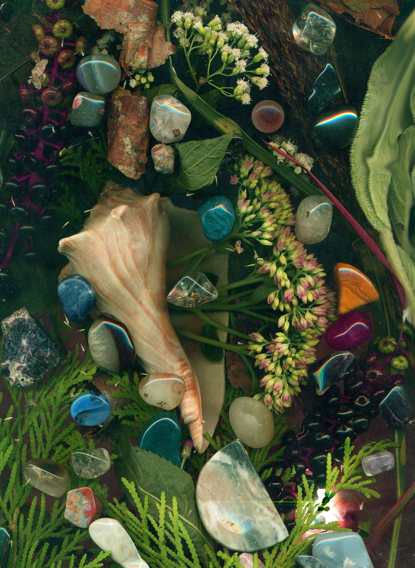 Artwork of shells, flowers, polished rocks, and natural green plants.