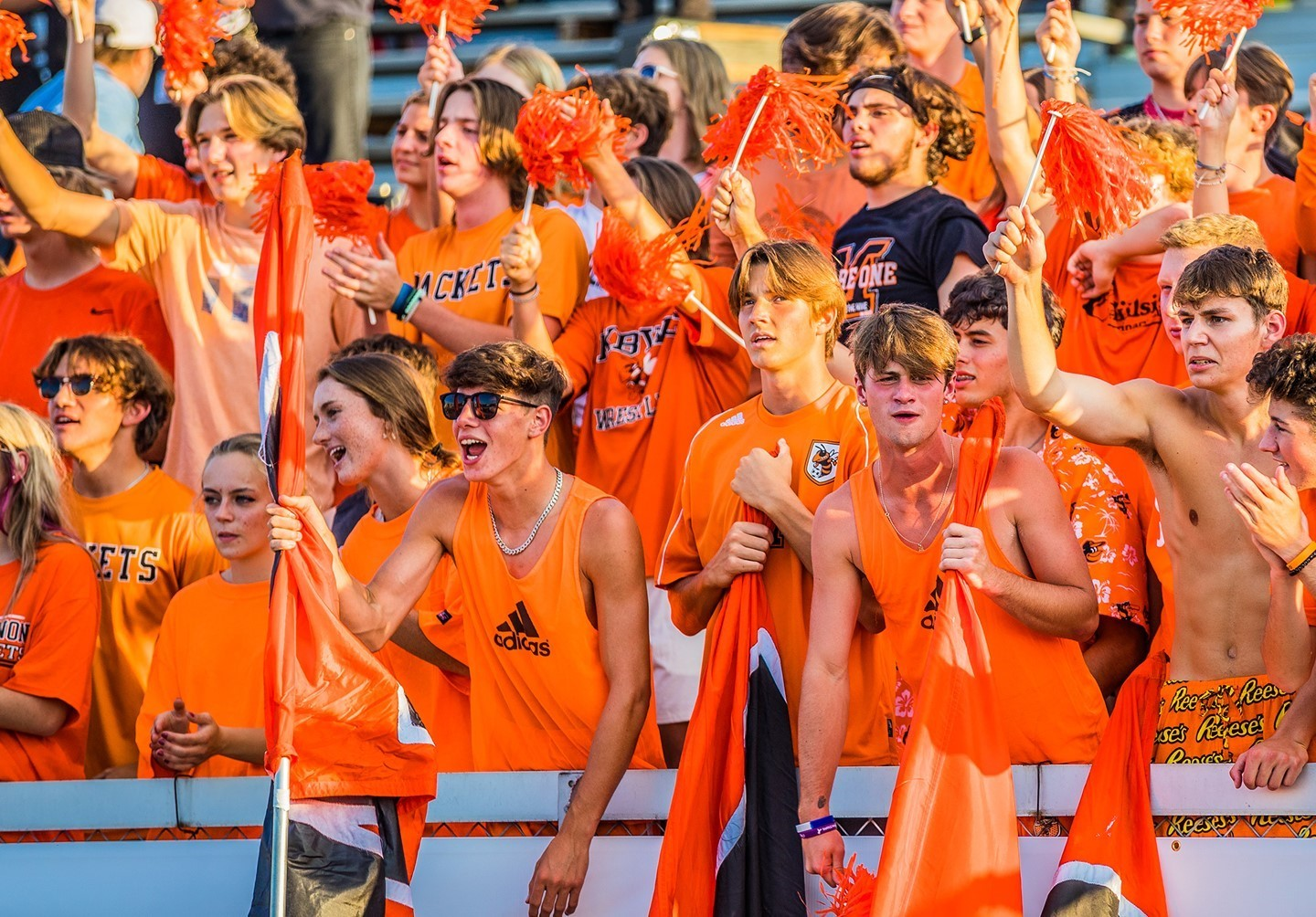 The HIVE cheering during their Orange Out.